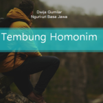 Tembung Homonim